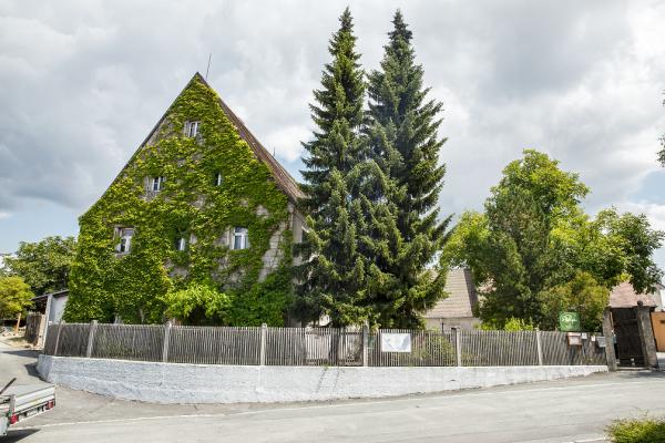 Original Steinwälder Kräuterlikör 30 vol.% 0,05 l - Karton mit 20 Flaschen