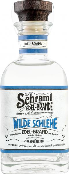 Wilde Schlehe 42 % 0,1 L- Karton mit 12 Flaschen